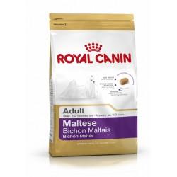 Royal Canin Maltese maistas...