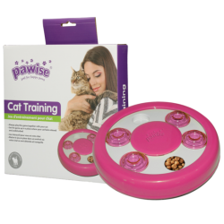 Pawise Cat Puzzle toy...