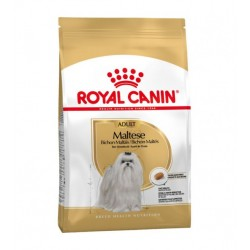 Royal Canin Maltese sausas...
