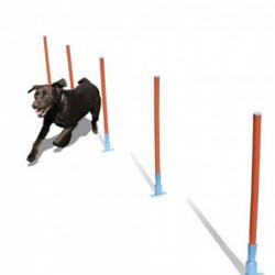 Rosewood pet Slalomas šunims